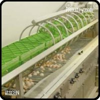 HATCHERY AUTOMATION