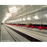 COMFORT 3® AVIARY SYSTEM