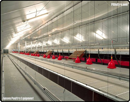 Comfort 3 174 Aviary System Proultry Com Avicultura Para