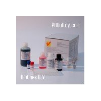 ALV - AVIAN LEUKOSIS VIRUS AANTIGEN TEST KIT