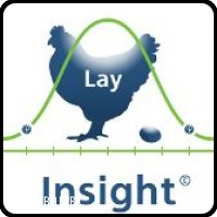 Lay-Insight