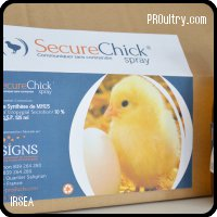SIGNS SecureChick