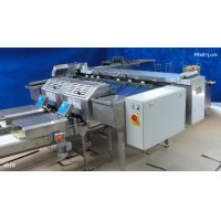 Egg grading machine with automatic packing lines - Völker