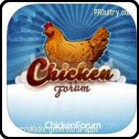Chicken Forum