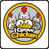 I grow Chicken