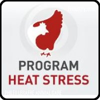 Program Heat stress Poultry