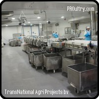 Poultry Processing  Line Stork, 4.000 to 8.000 bph