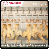 1000BPH to 6000BPH Poultry Duck Slaughtering Processing Equipment for Slaughterh