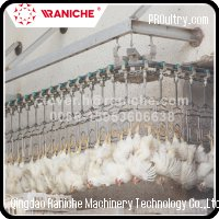 1000 to 5000 BPH Poultry Slaughterhouse Chicken Slaughtering Line Machine