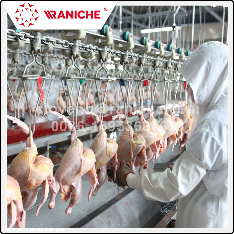 Marvelous 300 To 12000 Bph Poultry Slaughterhouse Chicken Slaughtering Download Free Architecture Designs Rallybritishbridgeorg