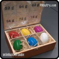 Calibration Eggs