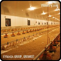 SYMAGA - TURNKEY LIVESTOCK FACILITIES- Poutry farm
